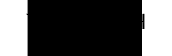 erwin_reich_logo_retina